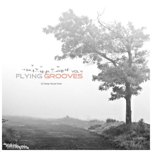 Flying Grooves, Vol. 4 (2017)
