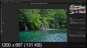 Индийские джунгли. Фотоманипуляция. Коллажирование (2017) HDRip