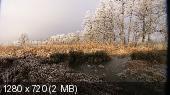 Forsenses II: Лесная гостинная. Увлекательное путешествие в мир природы и звука (2011) BDRip-720p