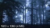 Mystic Forests / Волшебные леса (2012) HDDVDRip -1080i