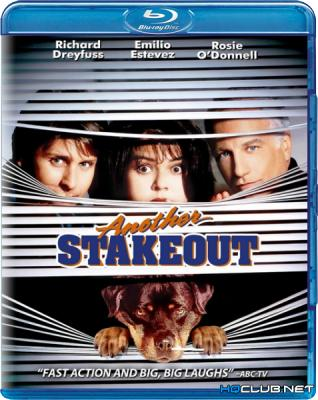 Слежка 2: Снова в засаде / Another Stakeout (1993) BDRip 1080p от NNNB | P, A