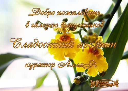 Галерея выпускников Сладостный аромат _d3c1067ada5490d911d58b766b26e0ec